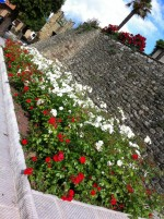 Mura Castellane - Monte San Savino